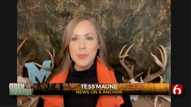 WATCH: Open Season Hunting-Chat Livestream (Nov. 19)
