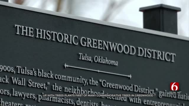 Tulsa Organization To Plant 'Tree Of Triumph' In Greenwood