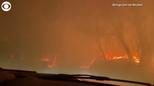 Watch: Car Drives Down California Road Surrounded By Wildfire