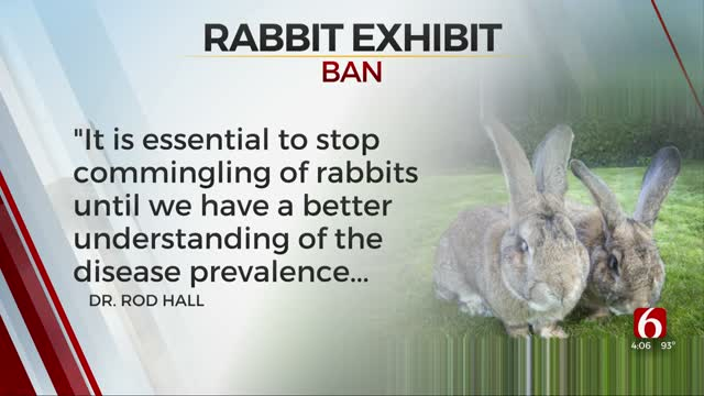 All Rabbit Exhibitions Banned In Oklahoma For 90 Days, OSU Vet Says