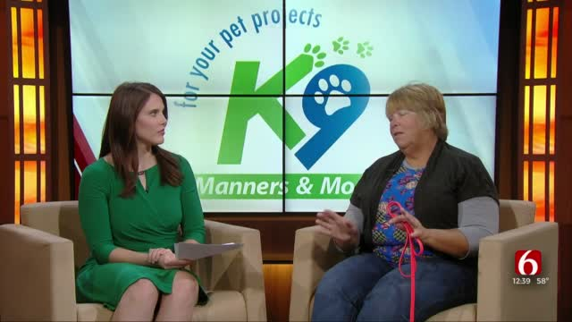 K9 Manners Marry Green Share Helpful tips for your furry friends