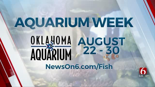 Oklahoma Aquarium Week Begins August 22