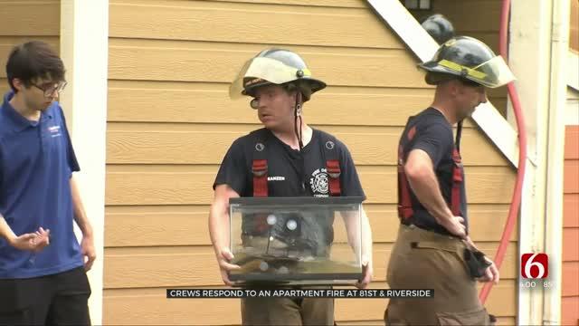 Crews Respond To Apartment Fire Near 81st, Riverside
