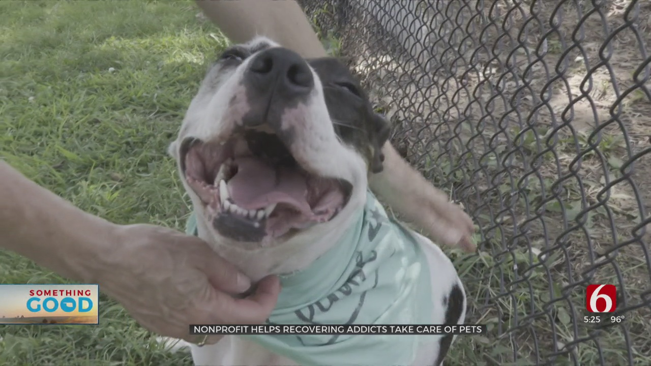 Tulsa Nonprofit Lends A Hand To Pet Owners As they Turn Their Life Around: 'There Is Hope'