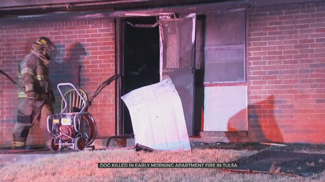 Dog Killed, 3 People Displaced By Early Morning Apartment Fire