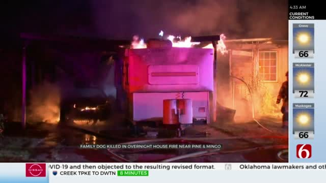 Arson Believed To Be Cause Of Fire That Killed Family Dog