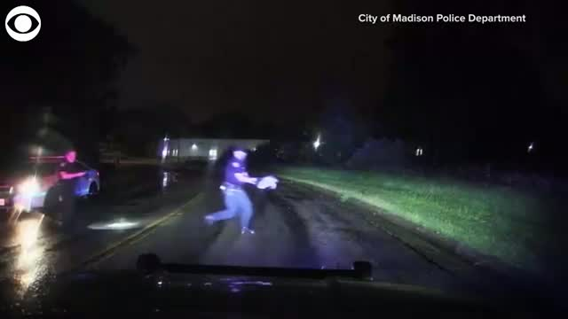 Watch: Police Officers Rescue Snapping Turtle