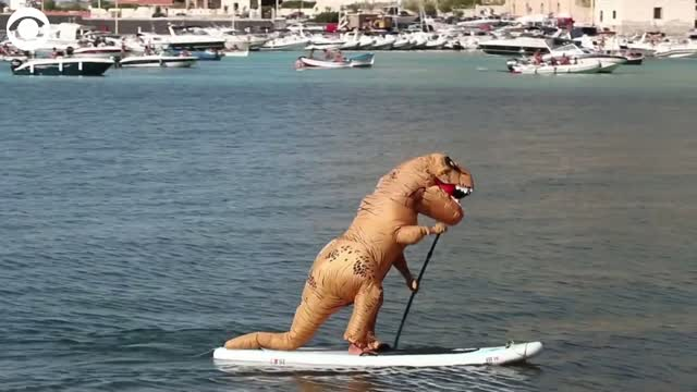 Watch: Dinosaur Paddleboards In Italy