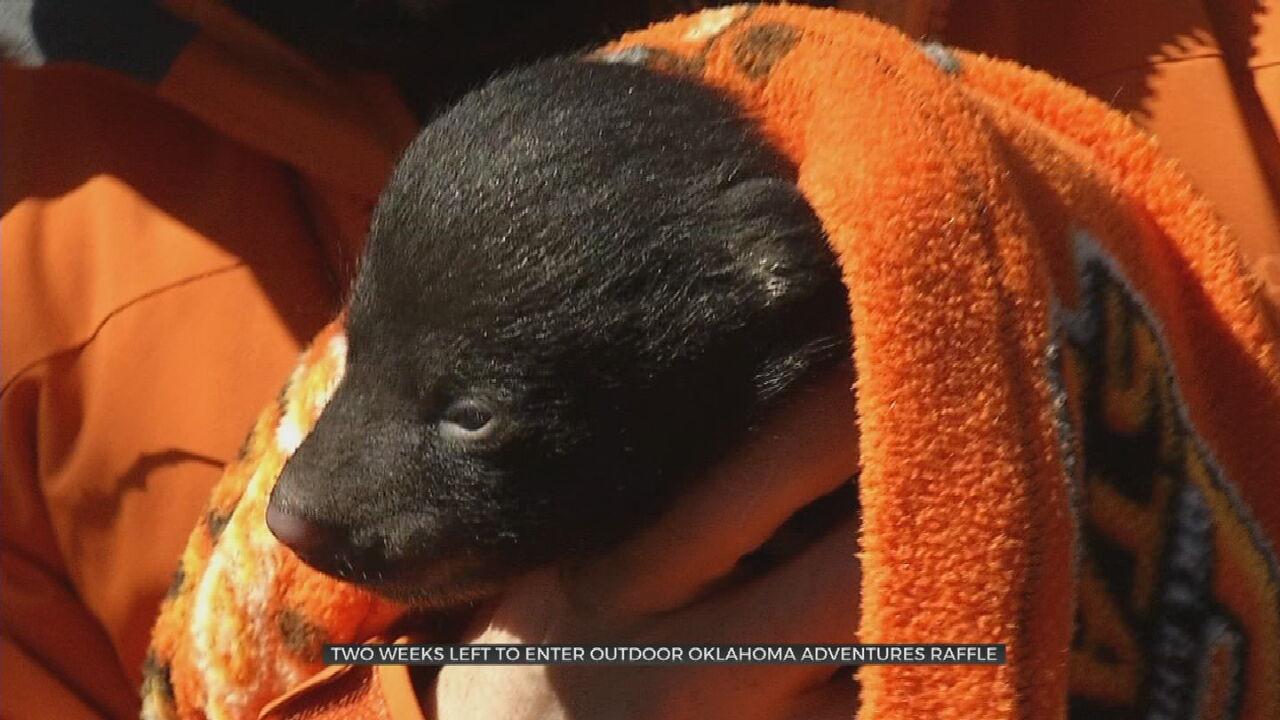 Outdoor Oklahoma Adventures Raffle Offers Rare Outdoor Experiences, Raises Money For Wildlife Department