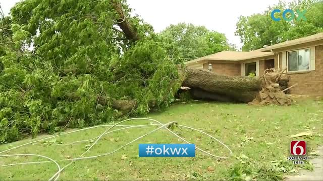 Thursday Night Storms Snap Trees, Leave Damage In McAlester