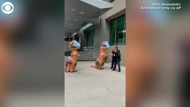 Watch: 'Dinosaurs' Hand Out Free Masks In Canada
