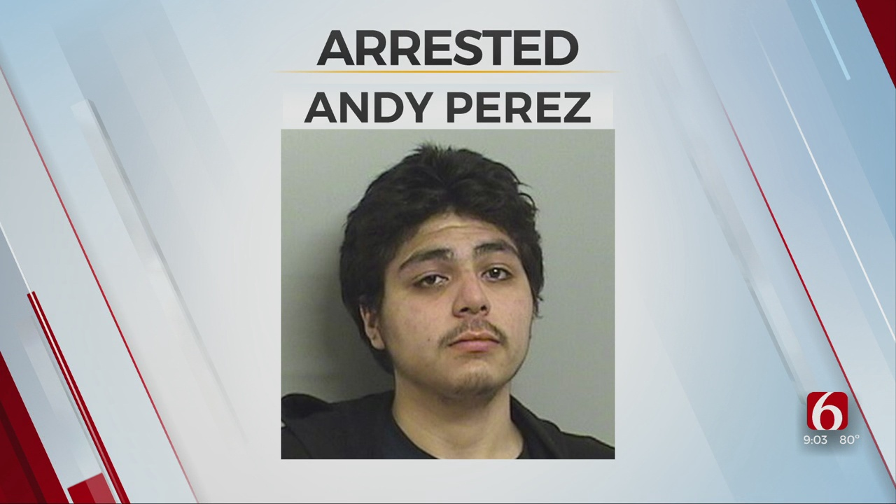 Police Arrest Man Accused Of Severely Beating His Mother