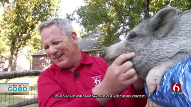 News On 6 Anchor Craig Day Puckers Up To 'Kiss The Pig'