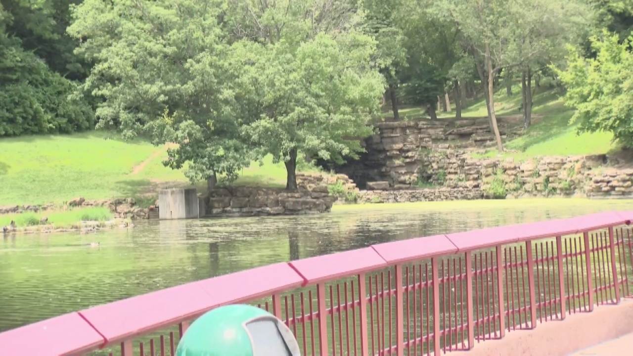 Image for Local organizations team up to clean up Krug Park