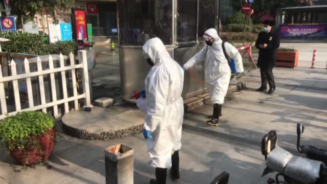 Panel: China, WHO Should Have Acted Quicker To Stop Pandemic