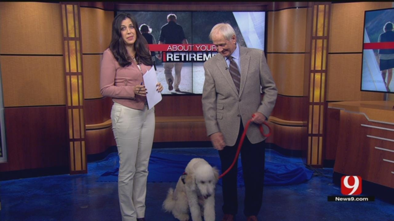 About Your Retirement: Service & Therapy Dogs