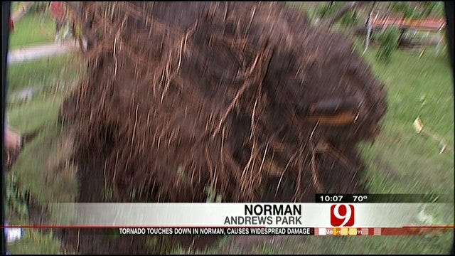 Norman Trees Devastated By Tornado