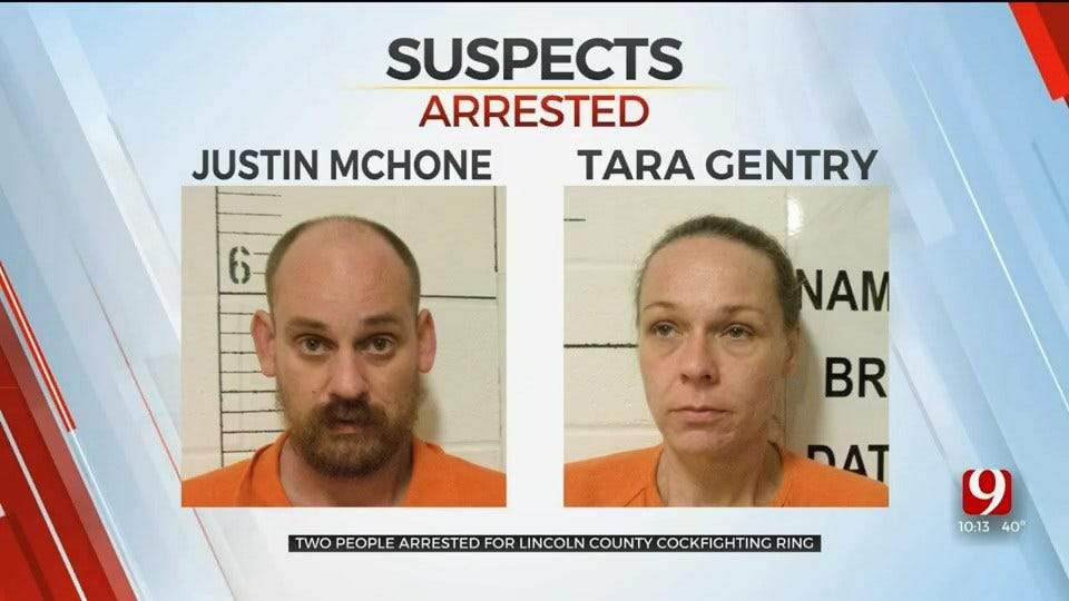 2 Arrested, More Likely After Harrah Cockfighting Ring Bust