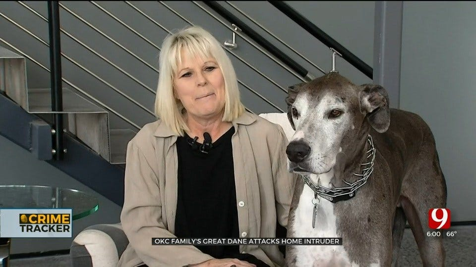Oklahoma City Family's Great Dane Attacks Home Intruder