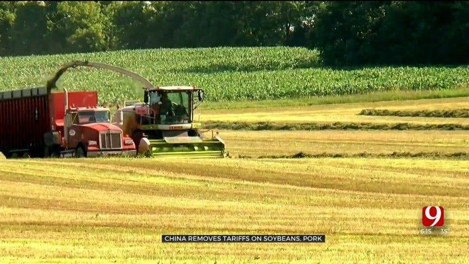 Oklahoma Farmers Optimistic After China Removes Tariffs On Soybeans, Pork