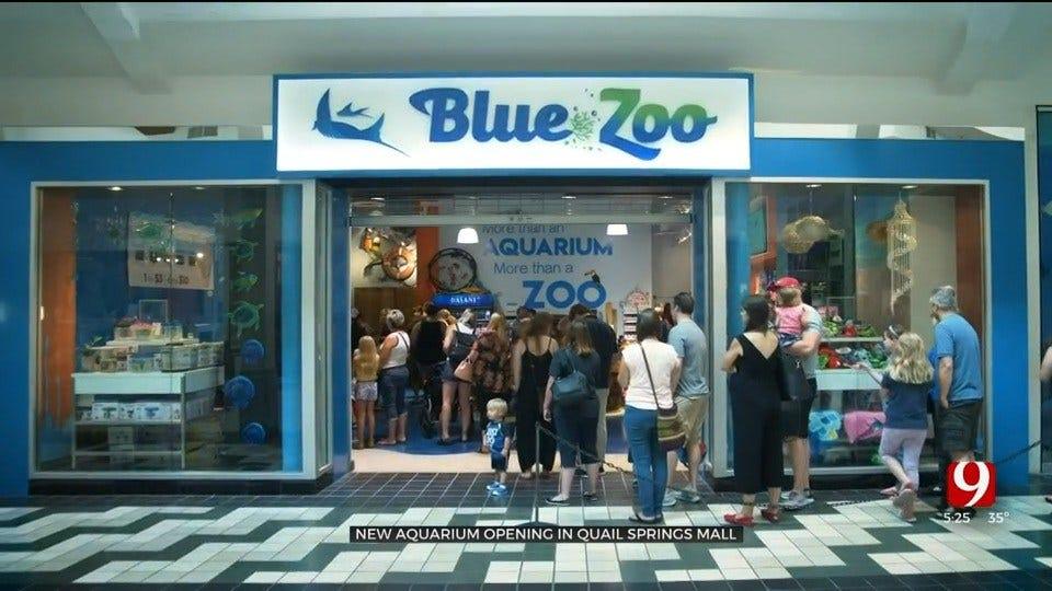New Aquarium Opening In OKC's Quail Springs Mall Summer 2020