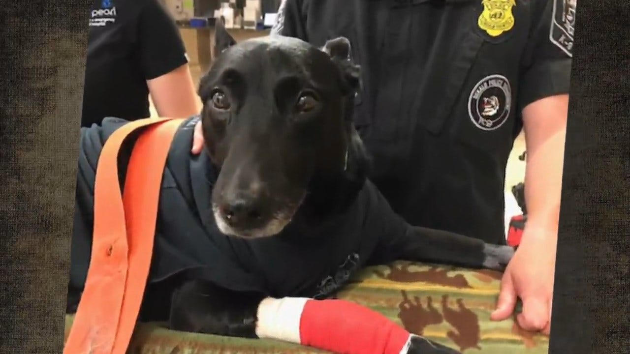 Officers Honor Hero K-9 Recovering After Shooting
