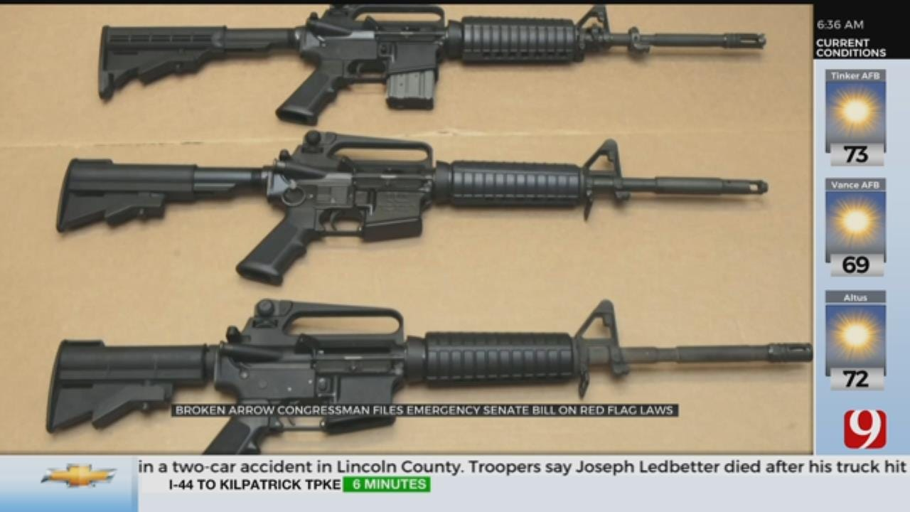 State Sen. Moves To Block Red-Flag Gun Laws Before They Start