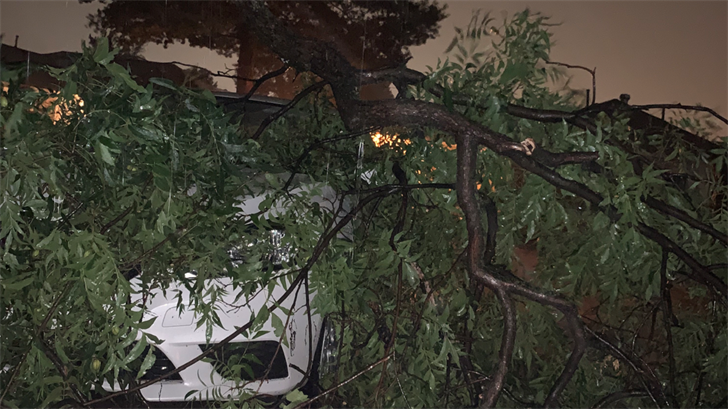 WATCH: Severe Weather Leaves Behind Damage, Power Outages In Del City