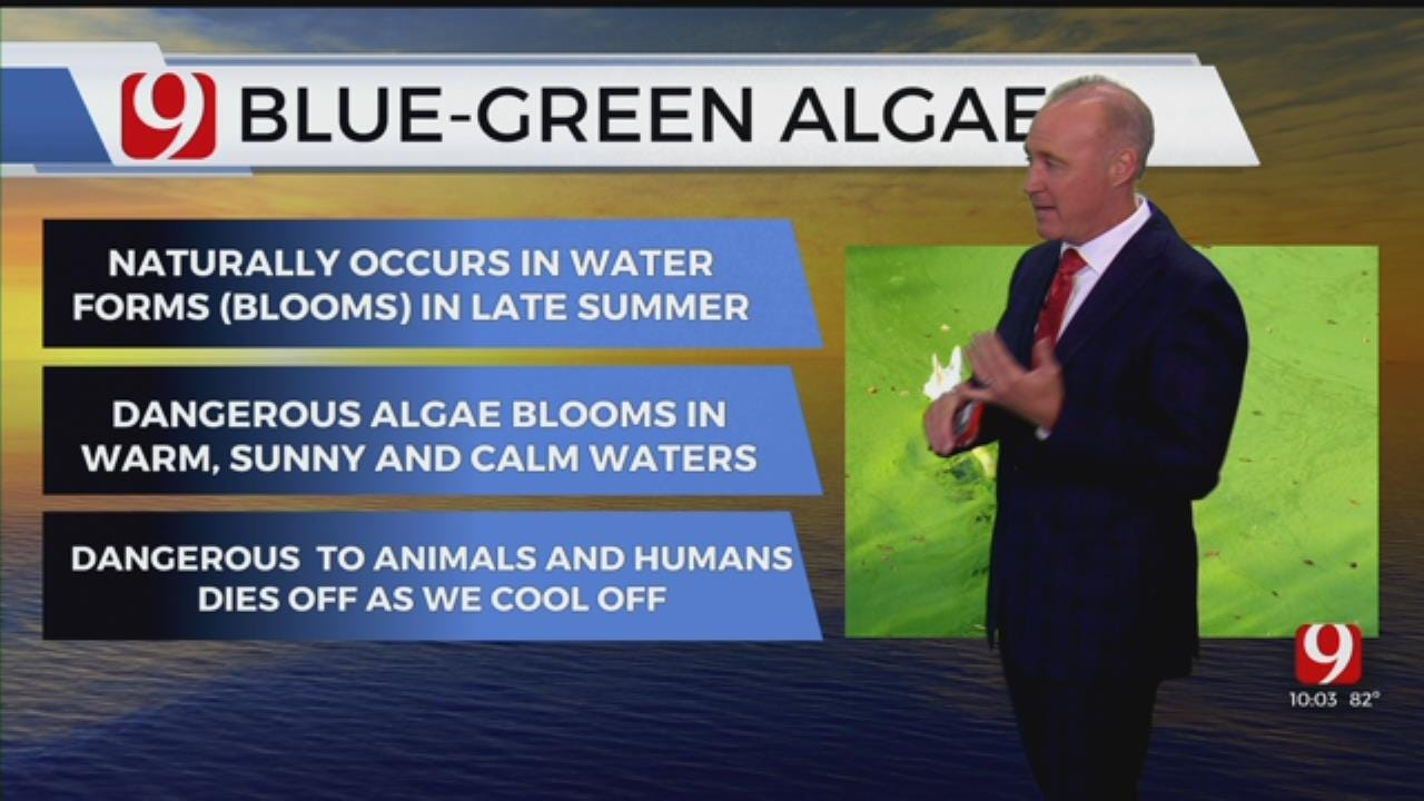 Edmond, Moore City Officials Warning Residents After Blue-Green Algae Found