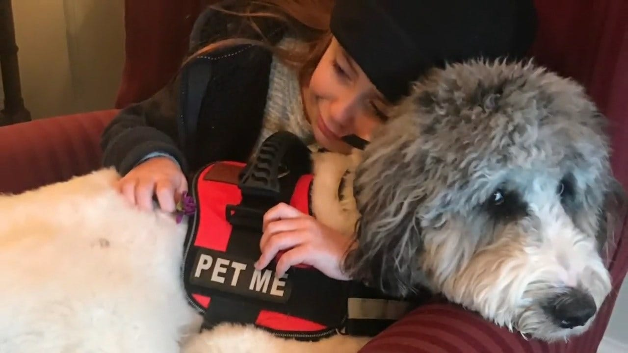 Funeral Home Uses Therapy Dog To Help Grieving Clients