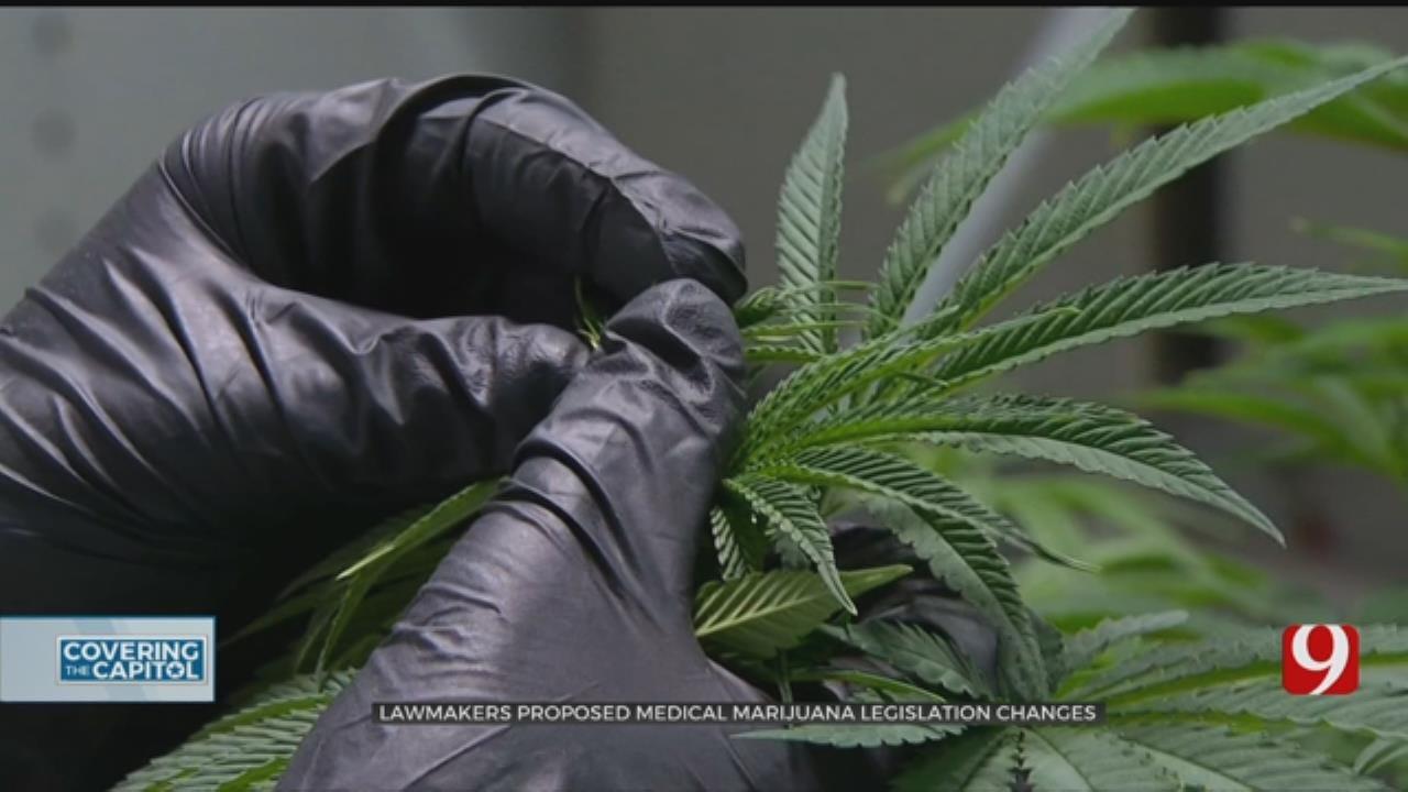 State Lawmakers Propose Medical Marijuana Legislation Changes