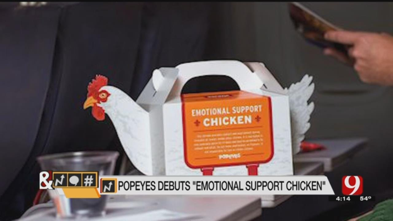 Trends, Topic & Tags: 'Emotional Support Chicken'