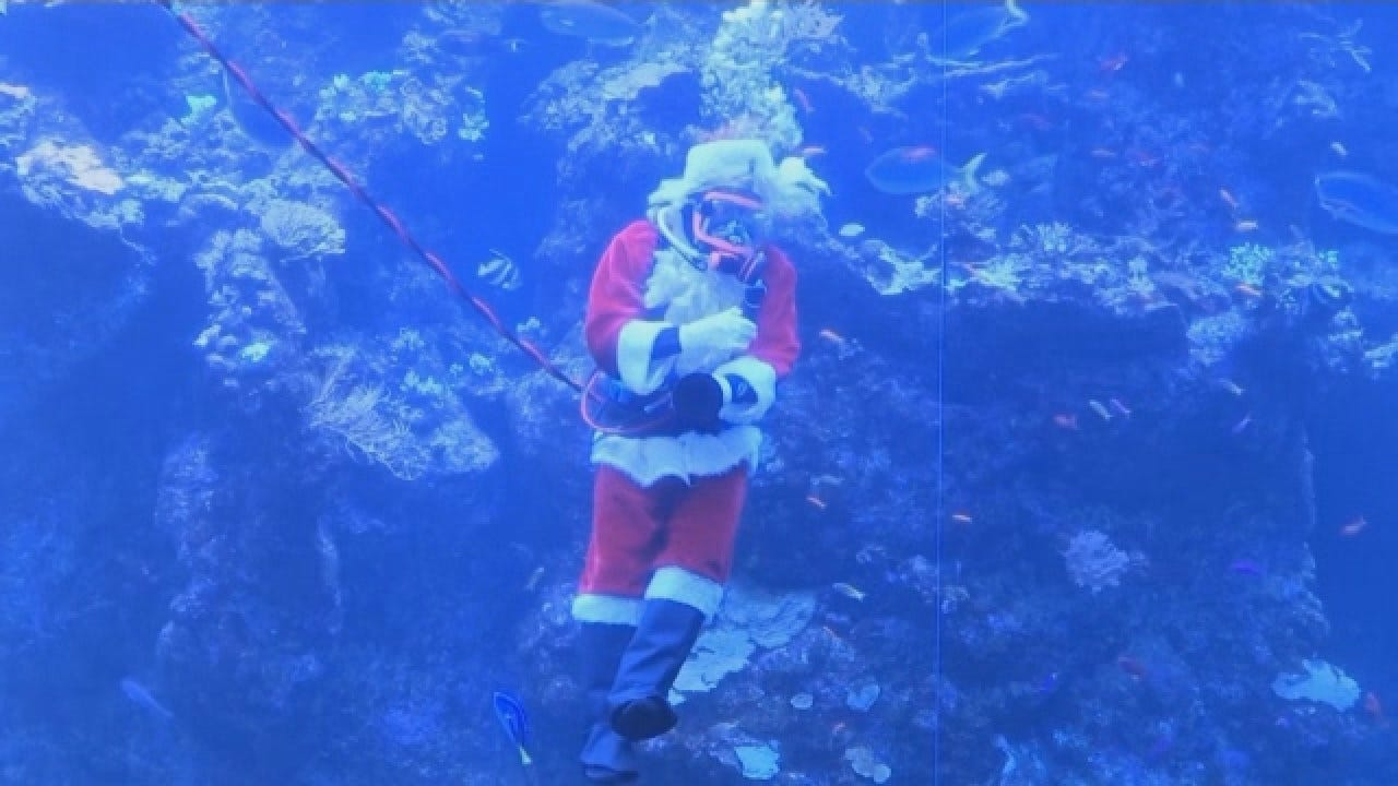'Scuba Santa' Show Features St. Nick Feeding Fish In Coral Reef Tank