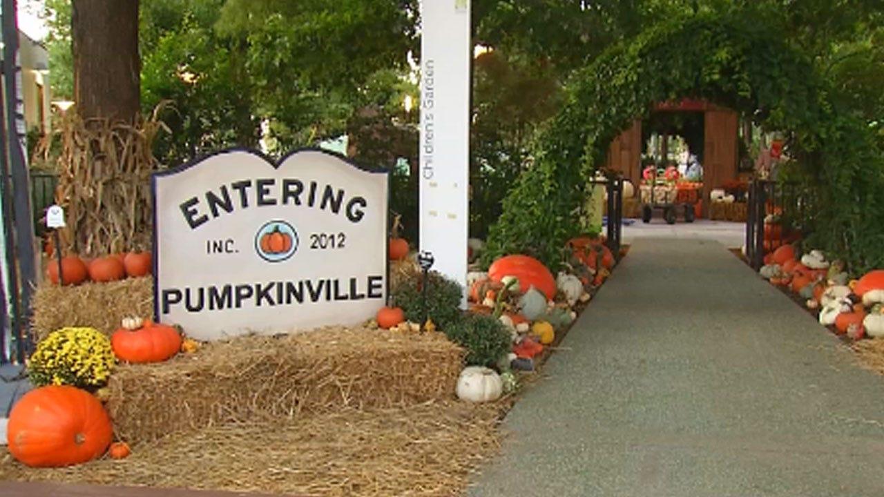 Pumpkinville Open At Myriad Gardens