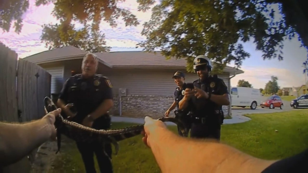 VIEWER DISCRETION: Moore Police Officer Captures Gator In Raw Bodycam Video