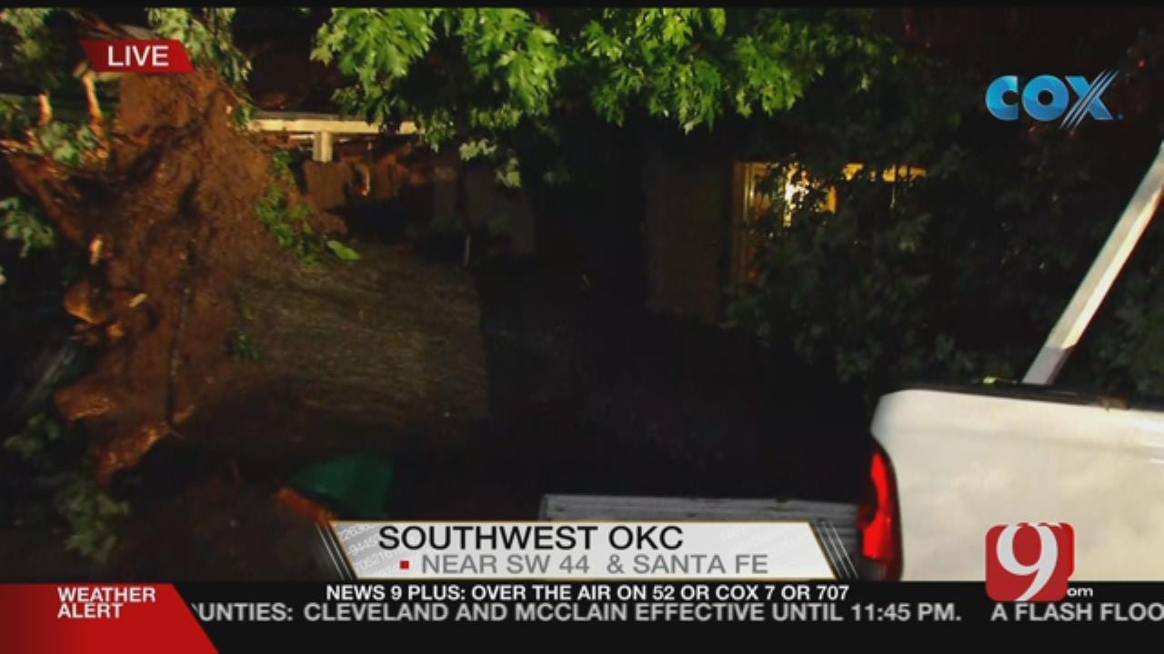 Tree Drops Down On Metro Man's Pickup Truck During Severe Storm