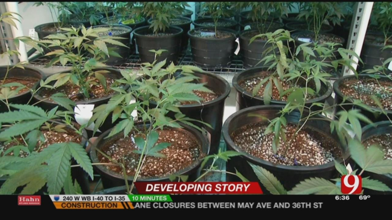 DOC Says No To Medical Marijuana In Prisons