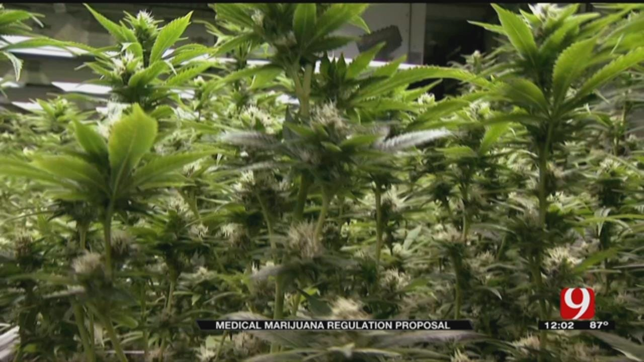 Pro-Marijuana Group Proposes Law Ahead Of Legislative Meeting
