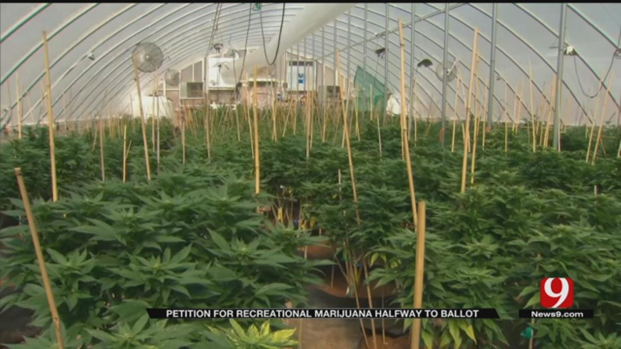 Recreational Marijuana Petition Halfway Toward Goal