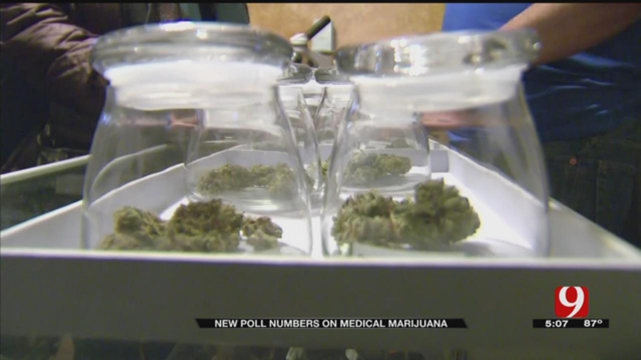 News 9 Polls Show Medical Marijuana Still Has Strong Support