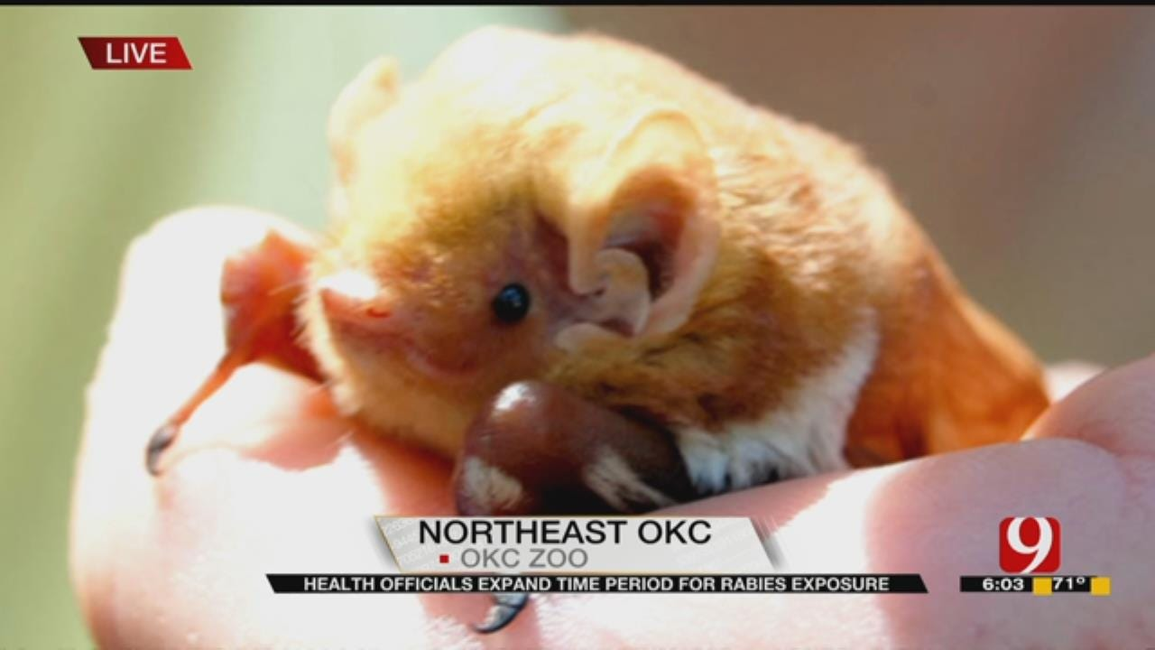 Health Officials Expand Period For Rabies Exposure At OKC Zoo