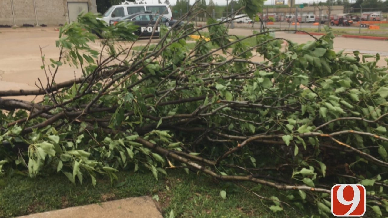WEB EXTRA: Storm Damage At NW 10th And Portland In OKC