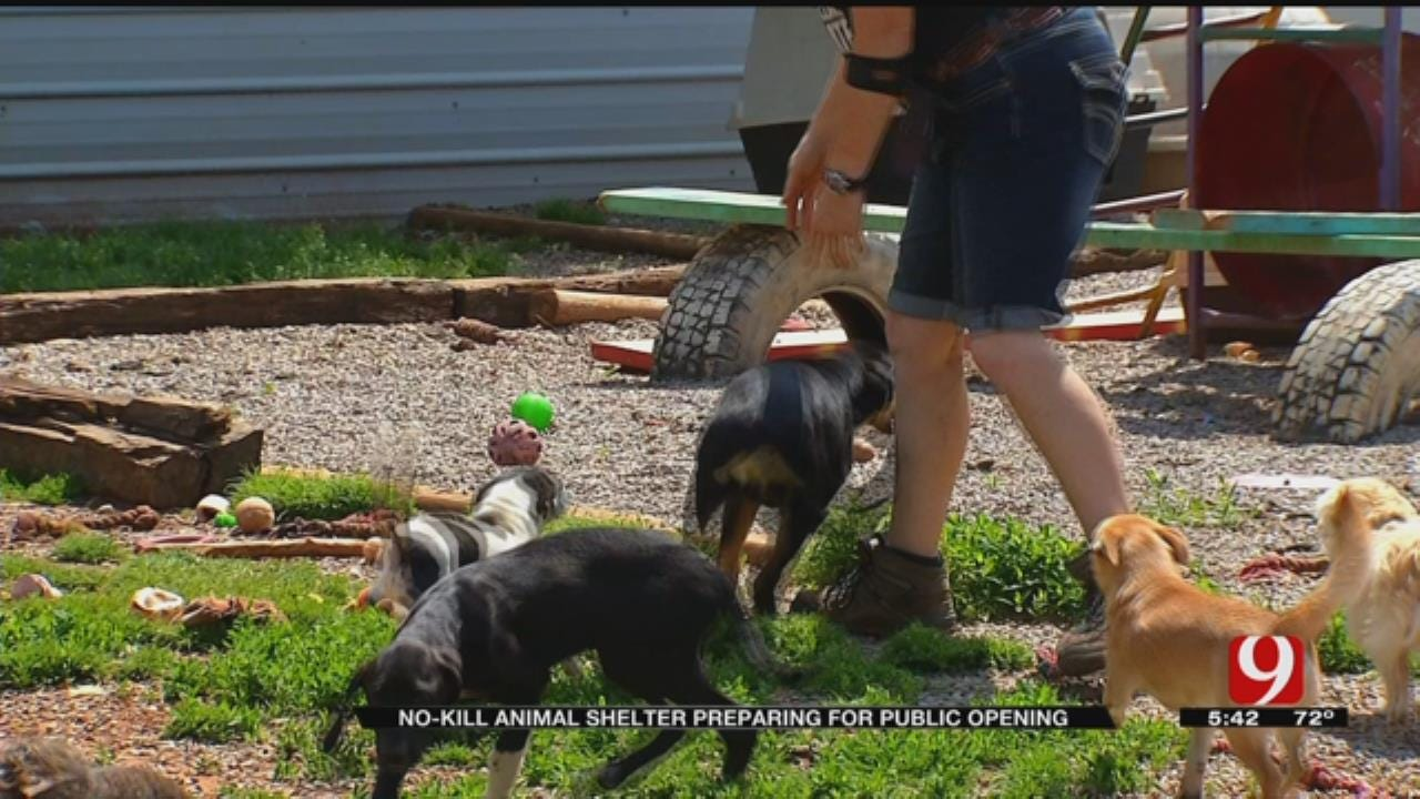 No-Kill Animal Shelter Expanding In Guthrie