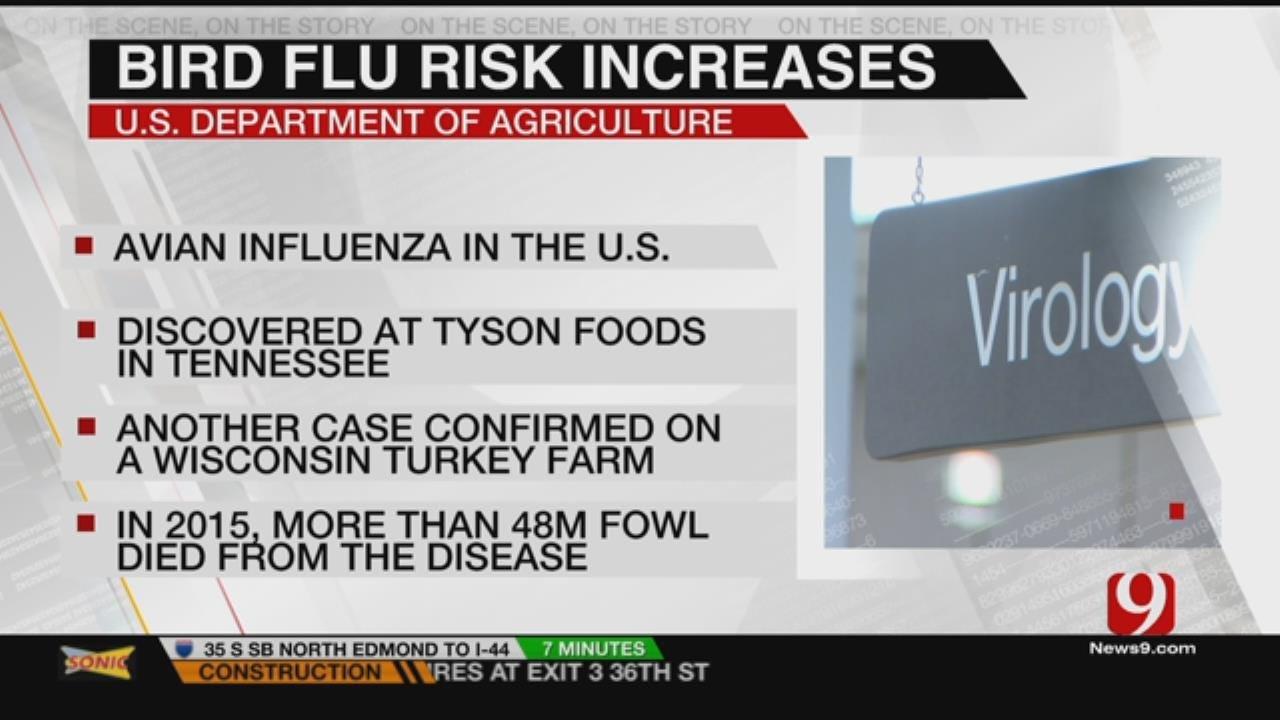 State Ag Department Warns Of Lurking Bird Flu