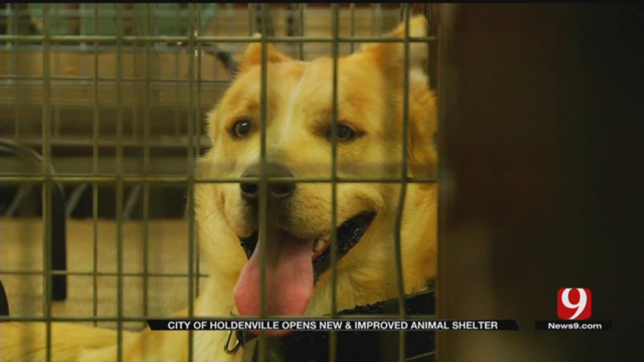 City Of Holdenville Opens New, Improved Animal Shelter