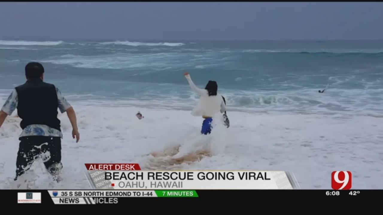 VIDEO: Good Samaritan Saves Boy From Big Wave In Hawaii