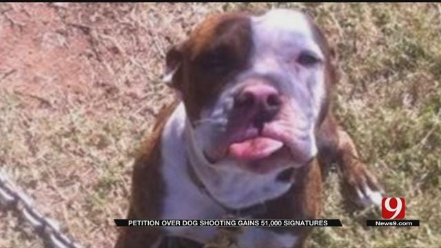 Petition Over Wynnewood Dog Shooting Gains 51,000 Signatures