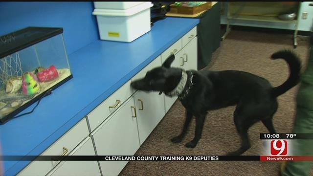 Cleveland County Deputies Train With K-9s