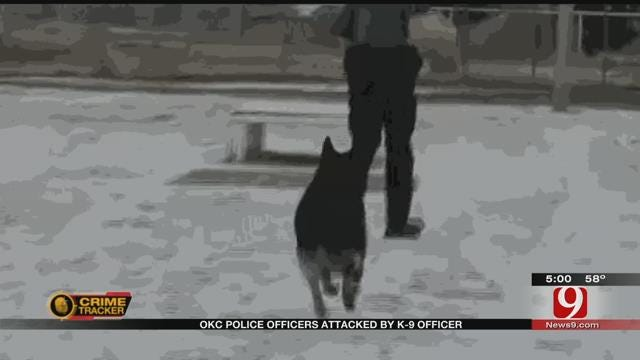 Two Officers Hospitalized After Being Bitten By Own K-9 In SW OKC