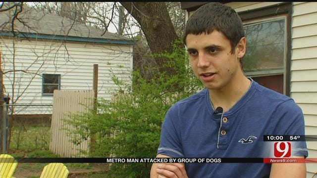 Metro Man Attacked By Group Of Dogs